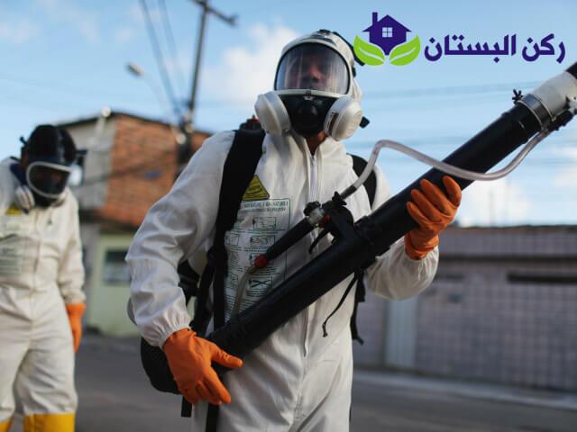شركة رش مبيدات بالمدينه المنوره