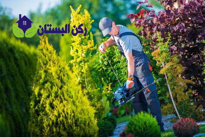 شركة تنظيم حدائق بالمدينه المنوره