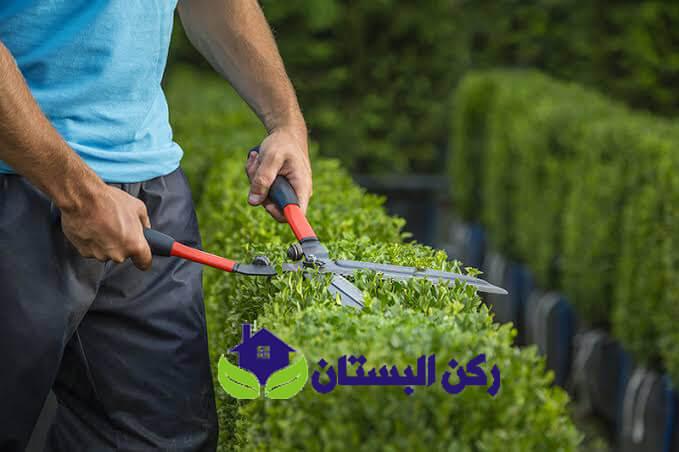 معلم تنسيق حدائق بالمدينة المنورة
