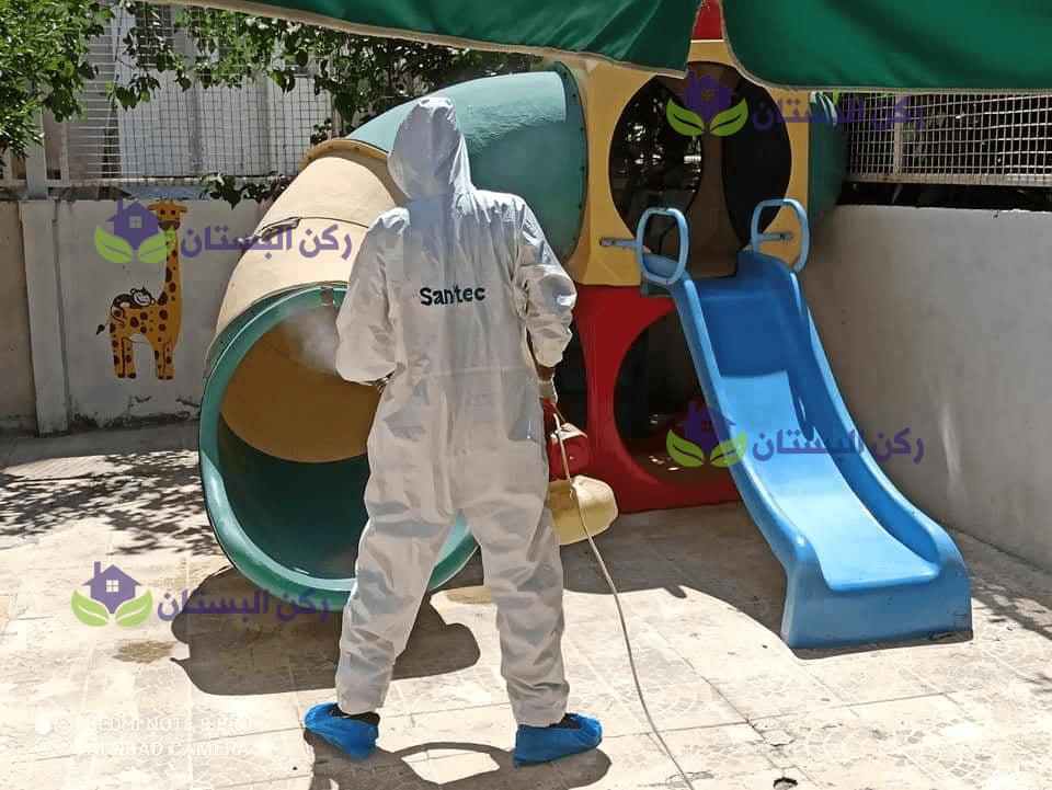 القضاء علي الحشرات بالمدينة المنورة